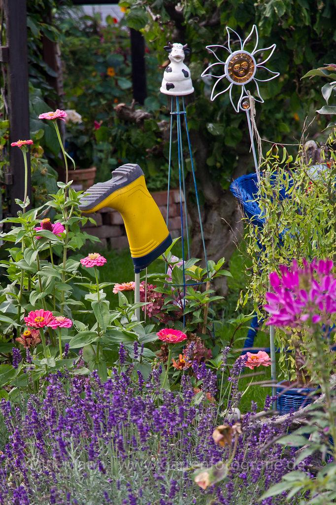 Fotos von Gartensituationen und Gartenportraits