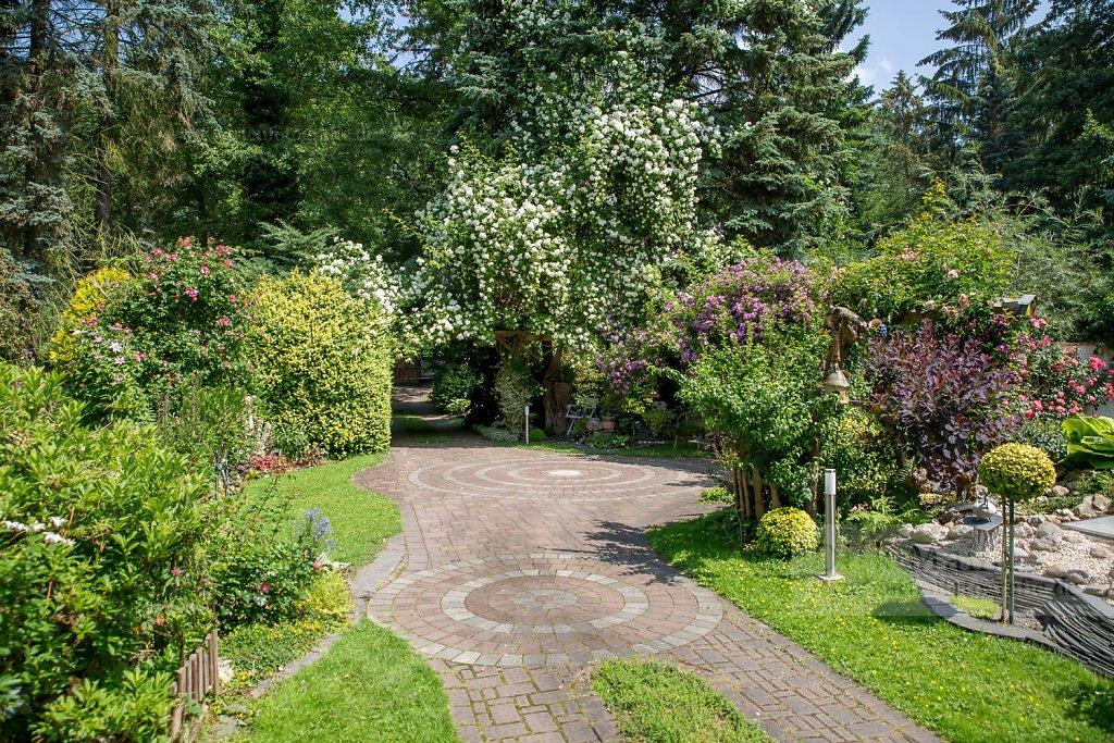 Bild: Blütenrausch im Garten